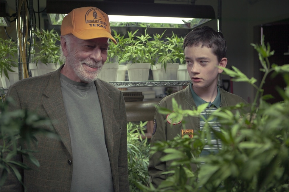 (Lindsay Elliott | courtesy Sony Pictures Classics) Jack (Christopher Plummer, left) teaches his grandchild Henry (Lewis MacDougall) the secrets of growing marijuana in the comedy-drama Boundaries.