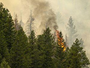 (Rick Egan | The Salt Lake Tribune)  The Bear Fire burns in the mountains northwest of Helper on June 9, 2021.
