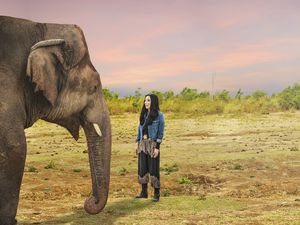 (Photo courtesy of the Smithsonian Channel) Kaavan the elephant and Cher.