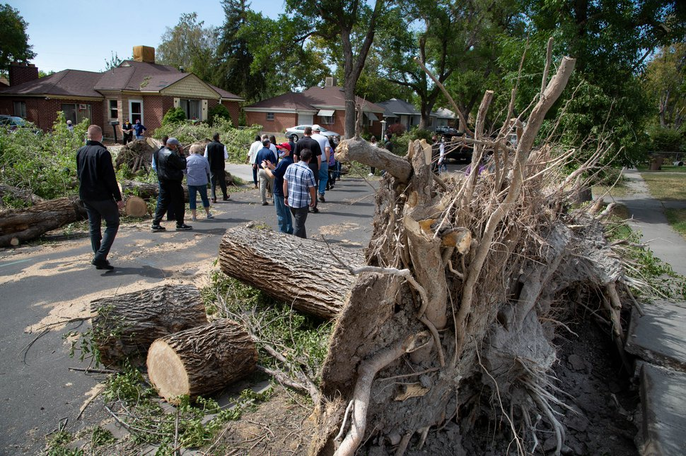 (Francisco Kjolseth | The Salt Lake Tribune) Gov. Gary Herbert and Salt Lake City Mayor Erin Mendenhall are joined by other state representatives as they tour the extensive wind damage in the Rose Park neighborhood on Wednesday, Sept. 9, 2020.