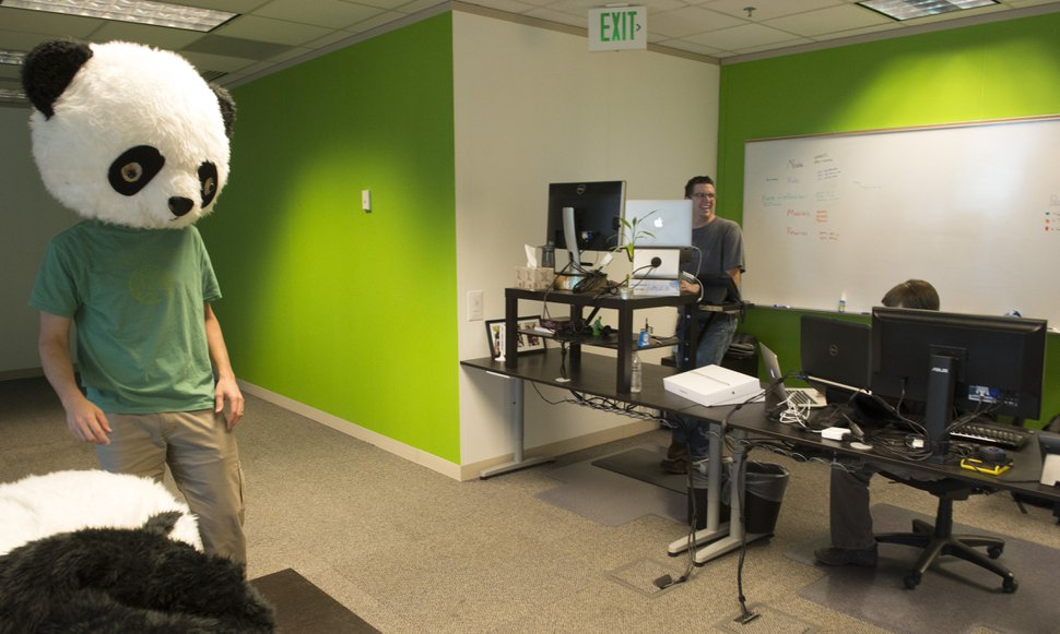 Rick Egan | The Salt Lake Tribune CEO Ben Peterson wears a panda head in the office of BambooHR, is a small information-technology company identified as one of the best workplaces in Utah, Wednesday, November 5, 2014