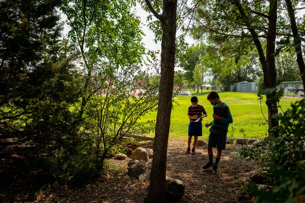(Trent Nelson | The Salt Lake Tribune) Students in Riverton Elementary teacher Donna Filion's 5th grade class work on a science-based scavenger hunt in a small grove of mature trees at the school.