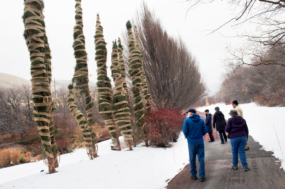 (Scott Sommerdorf | The Salt Lake Tribune) The 118th Audubon Society Christmas Bird Count underway at Red Butte Garden. The count is the longest running citizen-science survey in the world providing critical data on bird population trends, Saturday, December 16, 2017.