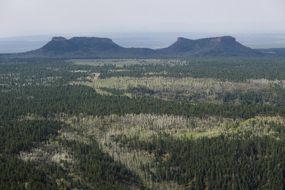 FILE - This Dec. 28, 2016, file photo shows the two buttes that make up the namesake for Bears Ears National Monument in southeastern Utah. The U.S. government is issuing draft proposals for how it would like to manage two national monuments in Utah that were significantly downsized by President Donald Trump in 2017 in a move that angered conservation and tribal groups and triggered lawsuits. (Francisco Kjolseth/The Salt Lake Tribune via AP, File)