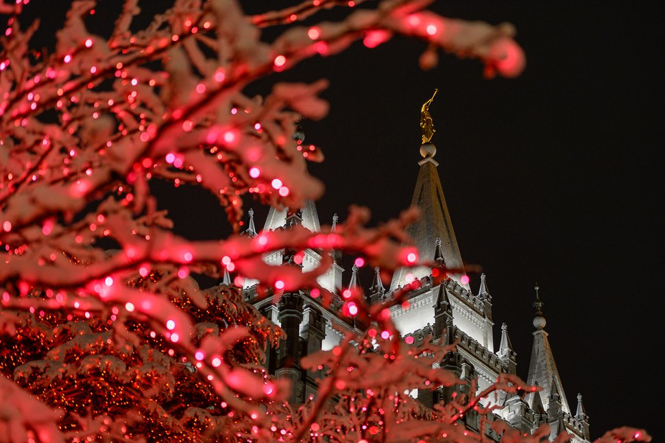 (Francisco Kjolseth | The Salt Lake Tribune) Visitors take in the sights as Temple Square in Salt Lake City comes to life Friday, Nov. 29, 2019, as hundreds of thousands of colorful LED bulbs light up, a yearly tradition that started in 1965. The lights will run through the end of the year.