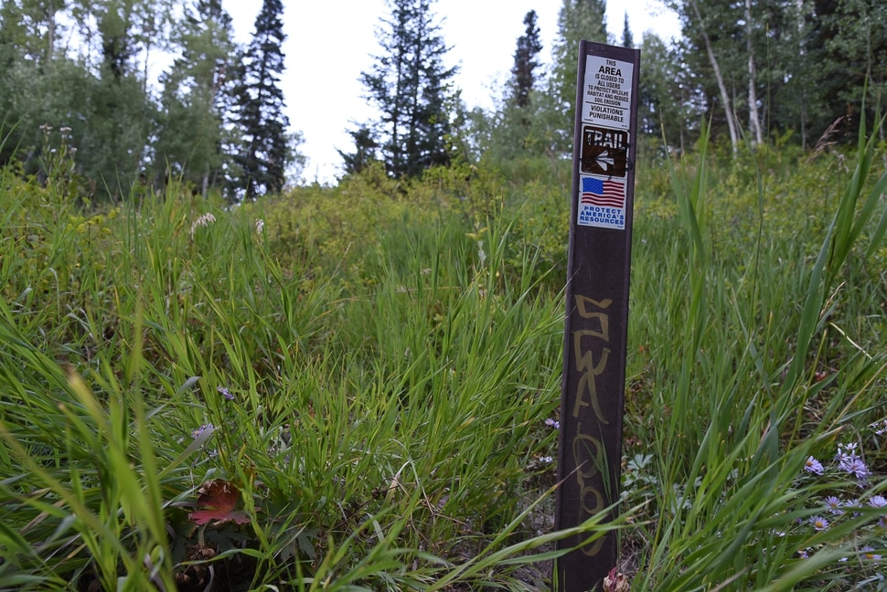 (Francisco Kjolseth   The Salt Lake Tribune) Graffiti is apparent on most signs along the popular Donut Falls trail on Friday, Aug. 31, 2018, in Big Cottonwood Canyon which draws regular crowds.