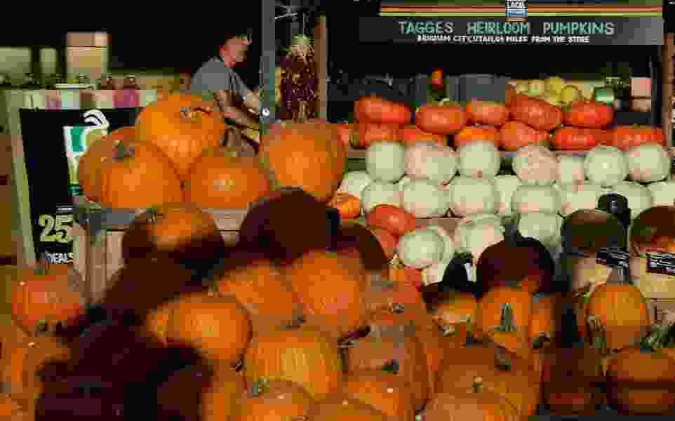 Utah's pumpkin frenzy is already peaking as October beckons