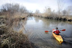    Tribune File PhotoKevin Rogers of Rose Park kayaks the Jordan River Saturday February 12, 2011. Rogers is the leader of Rose Park Revival, a group trying to change perceptions of Rose Park. He worked with the city to help restore a boat ramp off of Cornell Street.