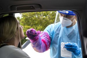 (Rick Egan | The Salt Lake Tribune) A health worker tests Morgan Munfod for COVID-19 at the Utah Department of Health parking lot, on Wednesday, Sept. 1, 2021.