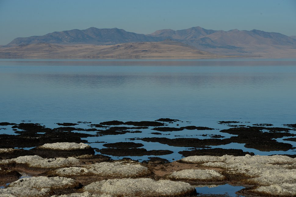 Francisco Kjolseth | The Salt Lake Tribune Small rock like structures formed by bacteria in the Great Salt Lake have become visible along the North shore of Antelope Island. Older structures dry up and collapse as the water recedes leaving dry domes. Known as microbialites, a few of the microbial mounds are being gathered and studied by researchers.