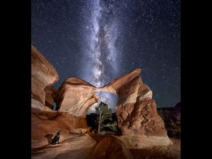 (Photo illustration courtesy of Christine Kenyon) The Metate Arch, in Grand Staircase-Escalante National Monument, shown in alignment with the Milky Way and adventure photographer Christine Kenyon's dog, Tuffy, in the foreground. This image was created by blending more than one photo taken from the same spot at separate but proximate times.