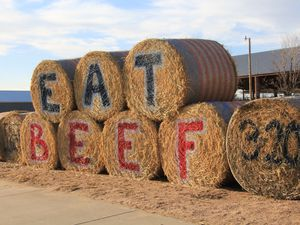 """(Photo by Allen Best 