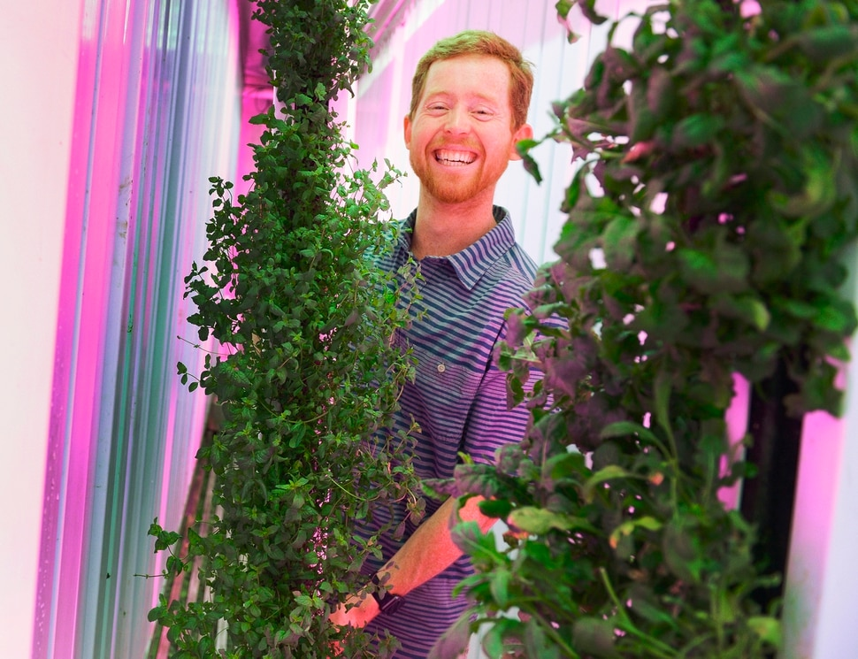 (Leah Hogsten | The Salt Lake Tribune) ÒThe goal is better for you, better for the environment,Ó said Ascent Farms owner Reed Snyderman, while tending to his organic hydroponic grown lettuces and leafy greens that he grows in a recycled shipping container. Snyderman will be selling his greens at this year's Downtown Farmers Market beginning this Saturday.