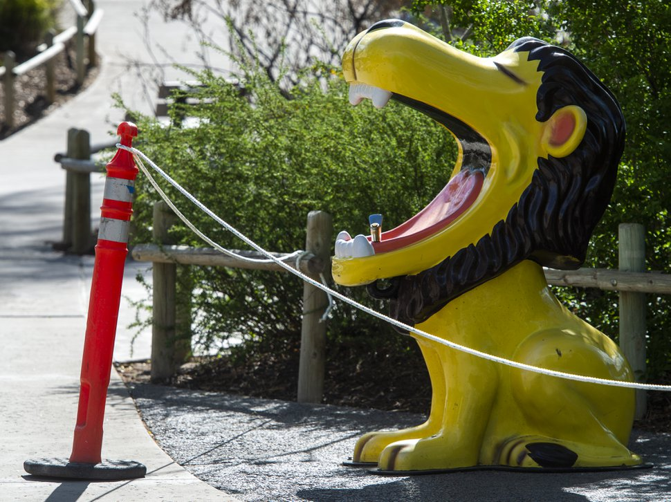 (Rick Egan | The Salt Lake Tribune) The iconic Lion drinking fountain is roped off for safety, as Hogle Zoo re-opened for visitors, with special rules for social distancing, Saturday May 2, 2020