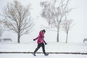 (Trent Nelson | The Salt Lake Tribune)  Snow falls in Sugar House Park, Salt Lake City on Wednesday Dec. 12, 2018.
