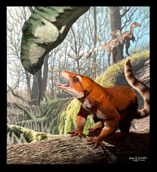 Artist rendering by Jorge A. Gonzalez of Cifelliodon with an iquanodont head.