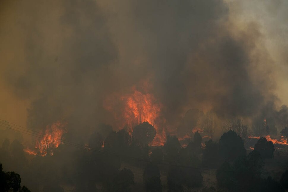 (Trent Nelson | The Salt Lake Tribune) The Coal Hollow Fire burns along Highway 6 in Utah County, Thursday Aug. 9, 2018.