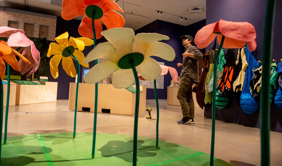 (Leah Hogsten | The Salt Lake Tribune) Exhibit designer and project director, Tim Lee, walks through an area where children can dress up in pollinator costumesand dance through giant flowers. Nature is on display at the Natural History Museum of Utah's newest exhibit Nature All Around Us, running Oct. 19, 2019 thru May 25, 2020. The hands-on exhibit encourages visitors to learn and practice the skills of a naturalist by exploring, celebrating and conserving the plants and animals, insects and birds in our own Utah neighborhoods, open spaces and waterways.