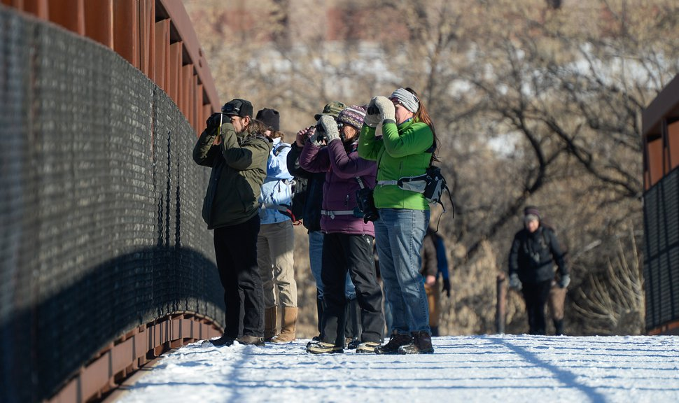 (Francisco Kjolseth | The Salt Lake Tribune) A group of Audubon members walk a long stretch of the Jordan River from Bangerter Highway to South Jordan on New Year's Day counting birds as part of the annual survey, now its 119th year, done by multiple members across Utah.