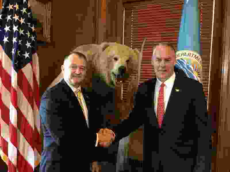 New Yellowstone boss named following predecessor's ouster