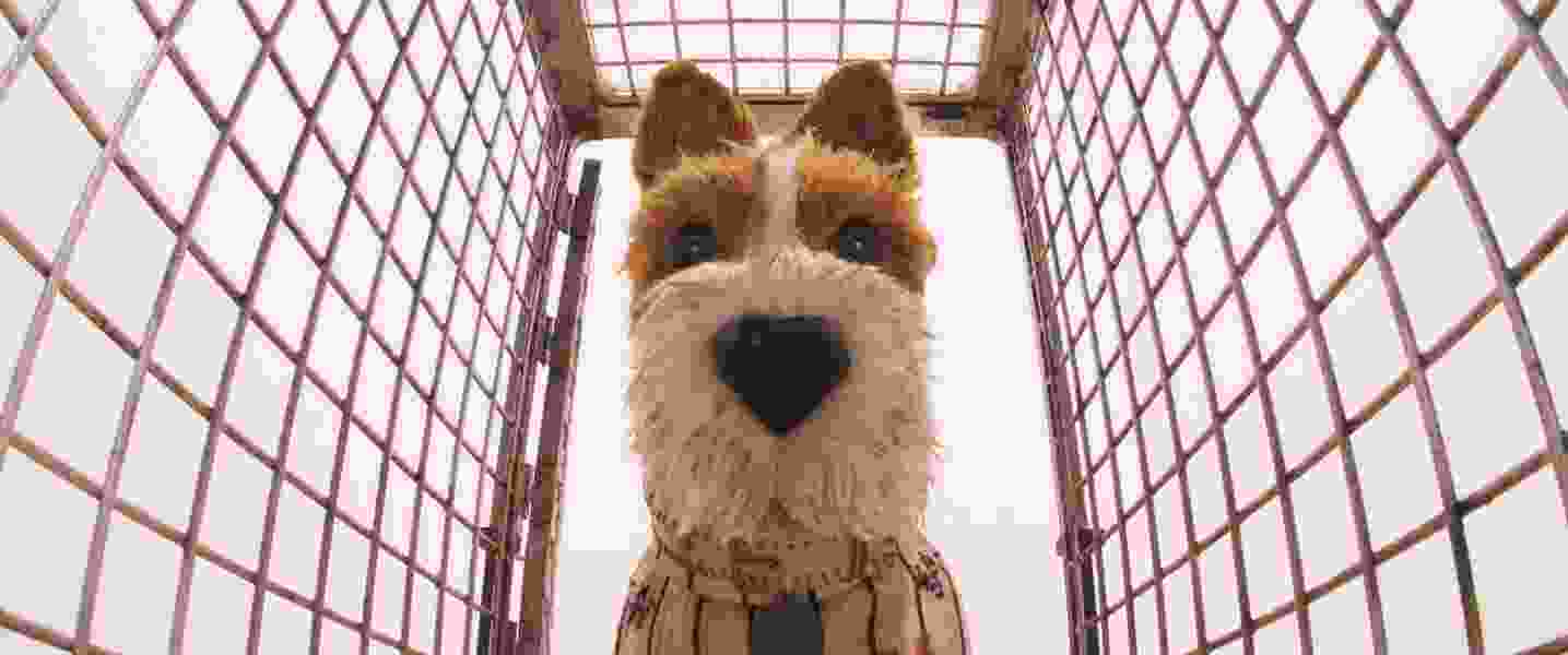 Wes Anderson doesn't stray with 'Isle of Dogs'