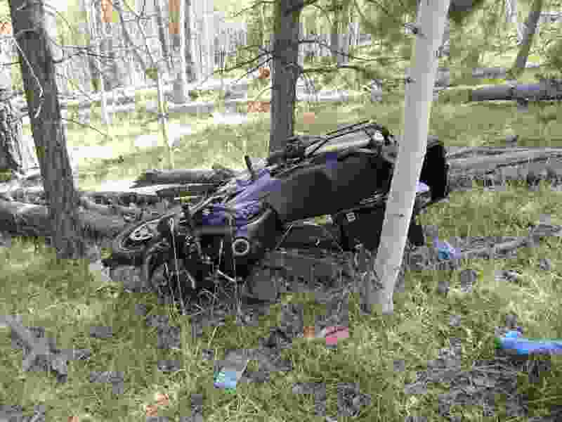 Suit dismissed against Boys Scouts and Mormon church over motorcyclist killed by felled tree