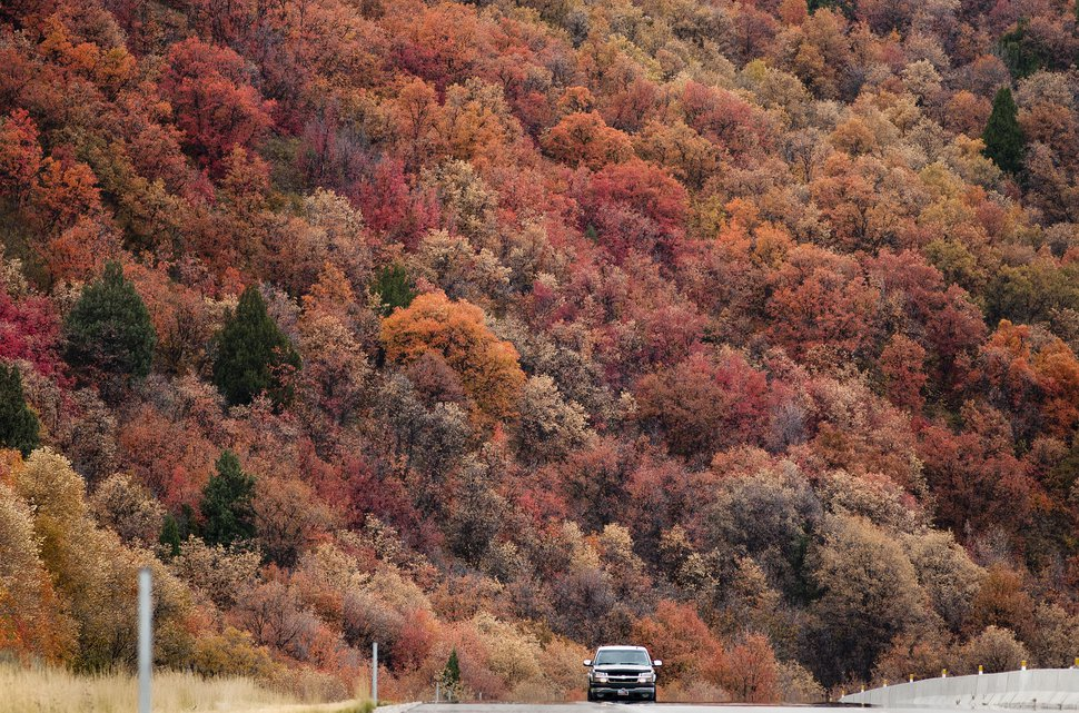 (Steve Griffin | Tribune File Photo) With the fall colors glowing in the evening sun travelers make their way down Sardine Canyon between Brigham City and Logan on Oct. 7, 2013.