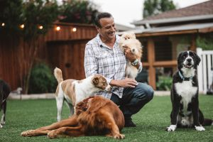 """(Photo courtesy of Tommy Habeeb Enterprises) Tommy Habeeb hosts """"To the Rescue,"""" a TV show that profiles rescue dogs and the people who love them."""
