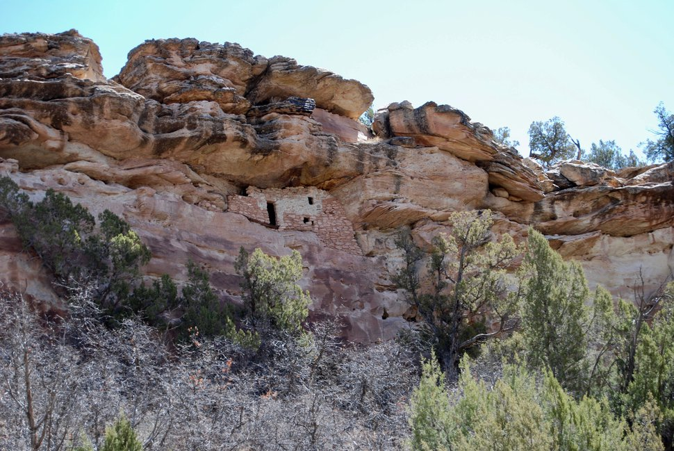 (Brian Maffly | The Salt Lake Tribune) Anasazi cliff dwellings remain hidden in the walls of Jenny Canyon, a tributary of Utah's Recapture Canyon east of Blanding. The Bureau of Land Management has issued numerous new oil and gas leases in an area that is blanketed with artifacts — over the objections of historic preservation groups that fear the BLM lacks sufficient information about thousands of cultural sites to ensure their protection.