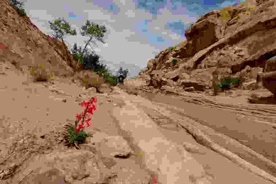 Tribune editorial: Public lands bill shows America's love for Utah