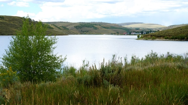 (Morgan Jacobsen | Utah Division of Wildlife Resources) Three new fish species will be introduced to Scofield Reservoir. Hopefully, the fish will help control Utah chubs and make fishing for sportfish at the reservoir better.