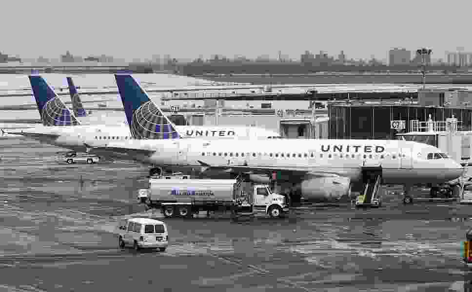 United Flight Rerouted After Putting Dog on Wrong Plane
