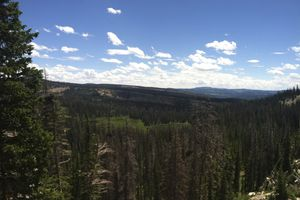 (Nate Carlisle  |  Salt Lake Tribune) Big Elk Lake, as seen on July 13, 2015, sits at the end of a 1.75 mile trail in the Uinta Mountains in Summit County. Summit County is one of five counties in Utah that has had a report of Lyme disease.