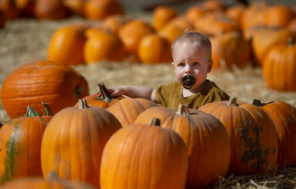 Halloween 2020 Utah Halloween in a pandemic: What Utah parents say about their plans