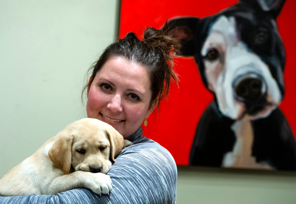(Rick Egan | The Salt Lake Tribune) Artist Cristall Harper with her new yellow lab puppy, in her studio in American Fork, Monday, Nov. 11, 2019.