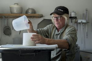(Leah Hogsten | The Salt Lake Tribune via AP) This photo, taken Sept. 13, 2017, shows Mesa Farms owner Randy Ramsley separating curds and whey into molds to drain and age into raw tomme or semi-hard alpine cheese. Ramsley sells a variety of goat milk cheese and yogurt at his farm's storefront on Highway 24, east of Capitol Reef, Utah, and at Tony Caputo's in Salt Lake City.