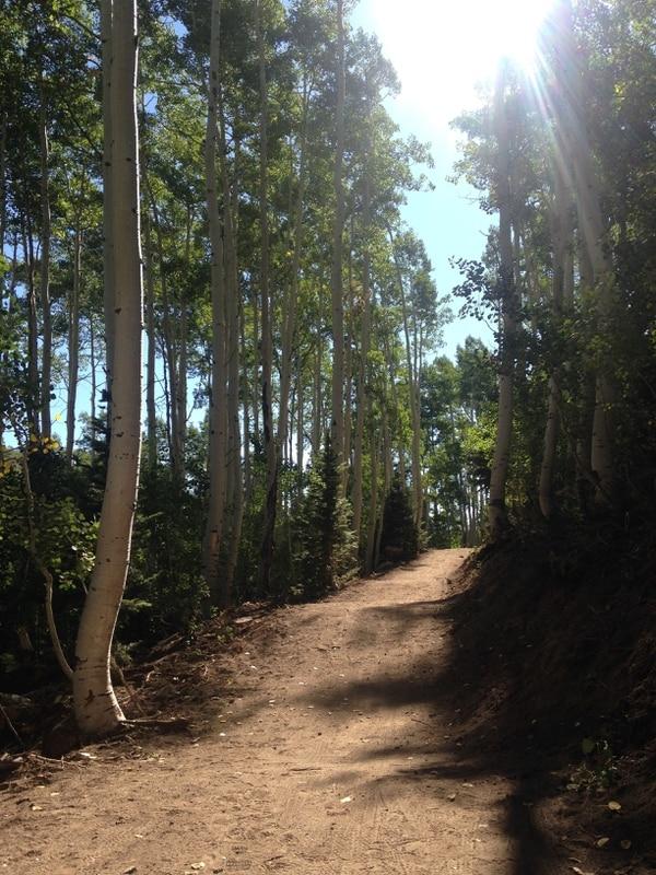   Courtesy Nikki Anne Schmutz The Holly Roller trail at Deer Valley, where Richard Schmutz died in a mountain bike accident in September 2016.