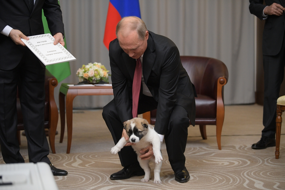 Russian President Vladimir Putin, right, holds a puppy presented by Turkmenistan's President Gurbanguly Berdymukhamedov during their meeting in the Bocharov Ruchei residence in the Black Sea resort of Sochi, Russia, Wednesday, Oct. 11, 2017. The presidents met at the sidelines of a summit of leaders of ex-Soviet nations in Sochi. (Alexei Druzhinin/Sputnik, Kremlin Pool Photo via AP)