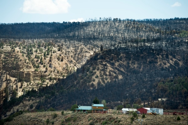 (Rick Egan   The Salt Lake Tribune) Some cabins were spared as the Dollar Ridge Fire burned along the ridge of Currant Creek Mountain, Tuesday, July 10, 2018.