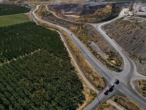 (Leah Hogsten     The Salt Lake Tribune)  Hopper trucks leave the Keigley Quarry near acres of tart cherry orchards, Sept. 29, 2020. Residents and fruit growers living and working in close proximity to multiple sand and gravel quarries on West Mountain are concerned about their air quality and fruit production in this bucolic area near Payson.