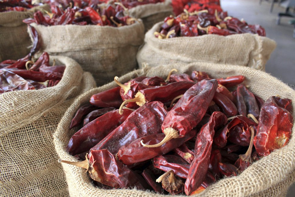 (Susan Montoya Bryan | AP file photo) Dried red chile pods at the Hatch Chile Sales shop along the main street of the self-proclaimed