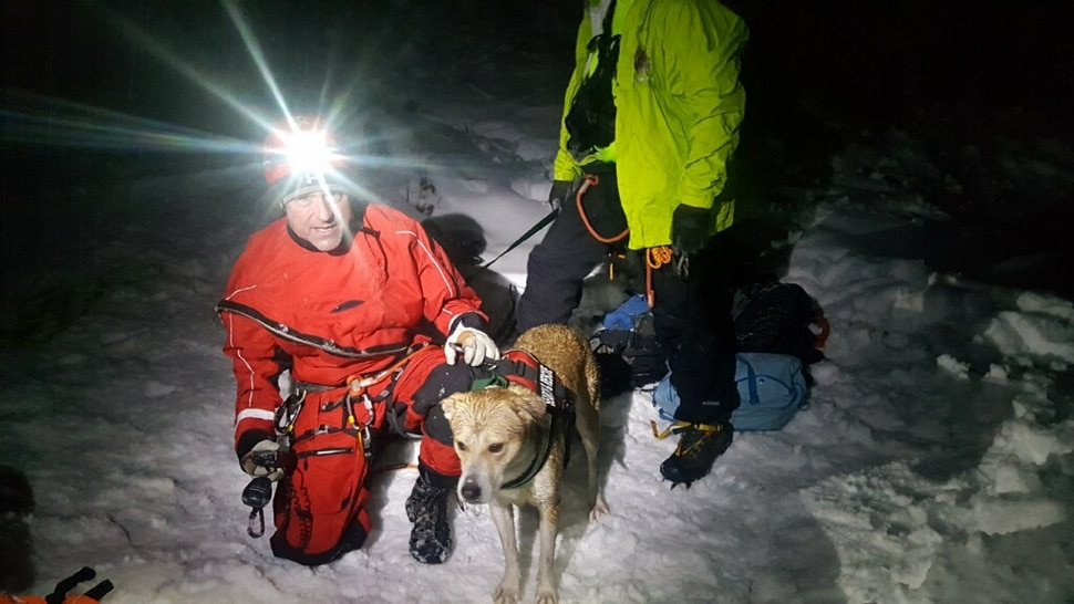 (Photo courtesy of the Utah County Sheriff's Office) Rescuers help a dog that fell into a 40-foot snow cavern at Stewart Falls near Sundance Ski Resort. The dog, Beeroo, fell through a hole in the ceiling on Saturday, Feb. 2.