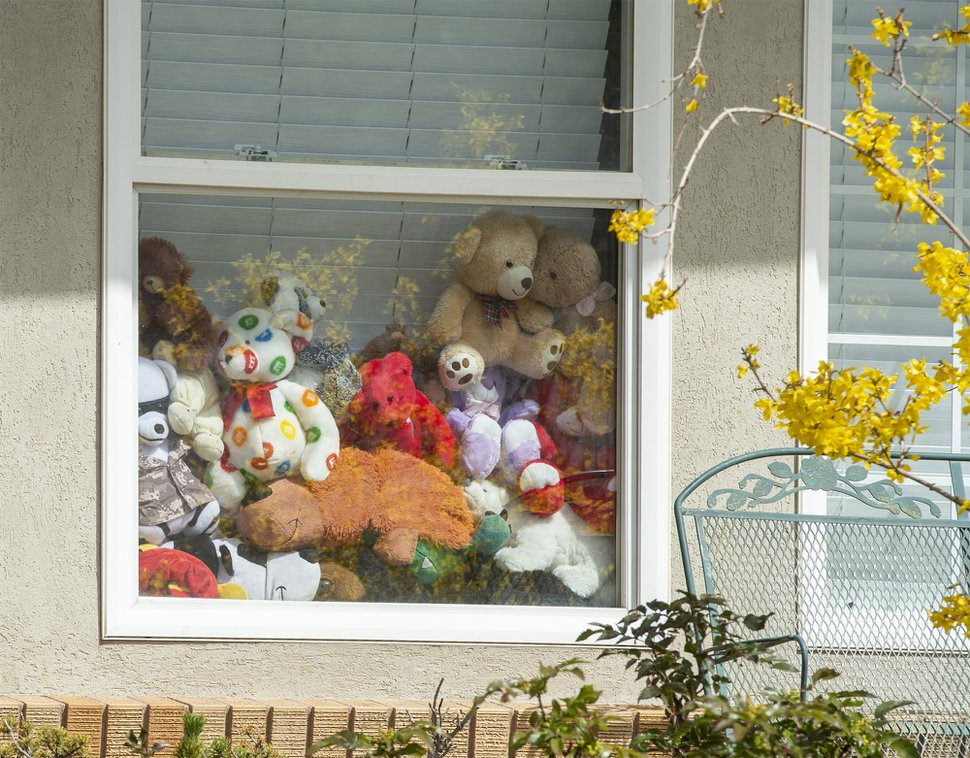 (Rick Egan | The Salt Lake Tribune) A window full of bears in a house in Bountiful on Wednesday April 1, 2020. Bears are showing up in windows of homes in Utah, so kids can go on a