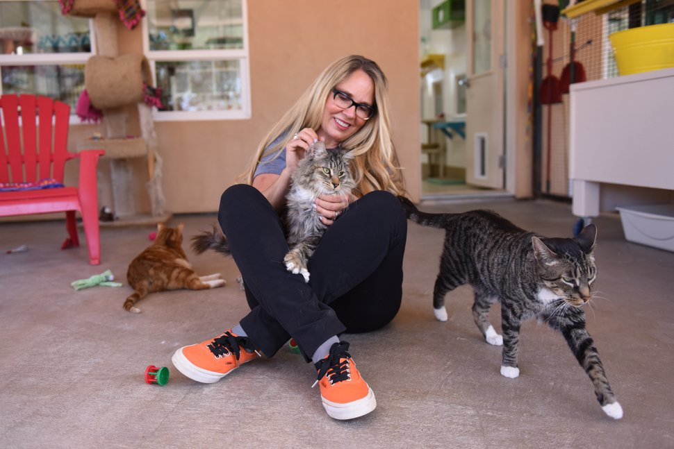 (Photo courtesy of Best Friends Animal Society) Best Friends Animal Society CEO Julie Castle.