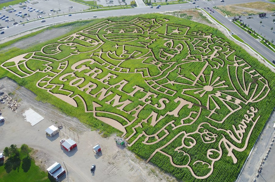 thanksgiving point s corn maze opens friday this year with a circus
