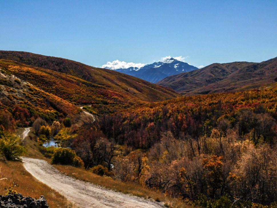 (Erin Alberty|The Salt Lake Tribune) Autumn foliage lights up the slopes rising out of Cascade Springs on Oct. 9, 2017 in Wasatch County.