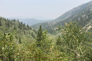(Kelly Cannon | The Salt Lake Tribune) One of the views from a resting spot on the Timpooneke Trail.