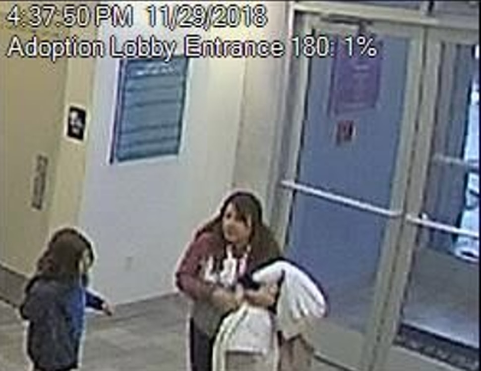 (Photo courtesy Humane Society of Utah) Security camera footage shows the woman believed to have stolen a puppy from the Humane Society's adoption center in Murray on Thursday.
