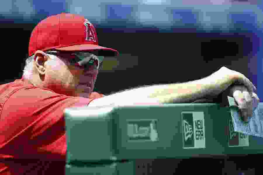 Report: Angels manager Mike Scioscia expected to step down at end of season