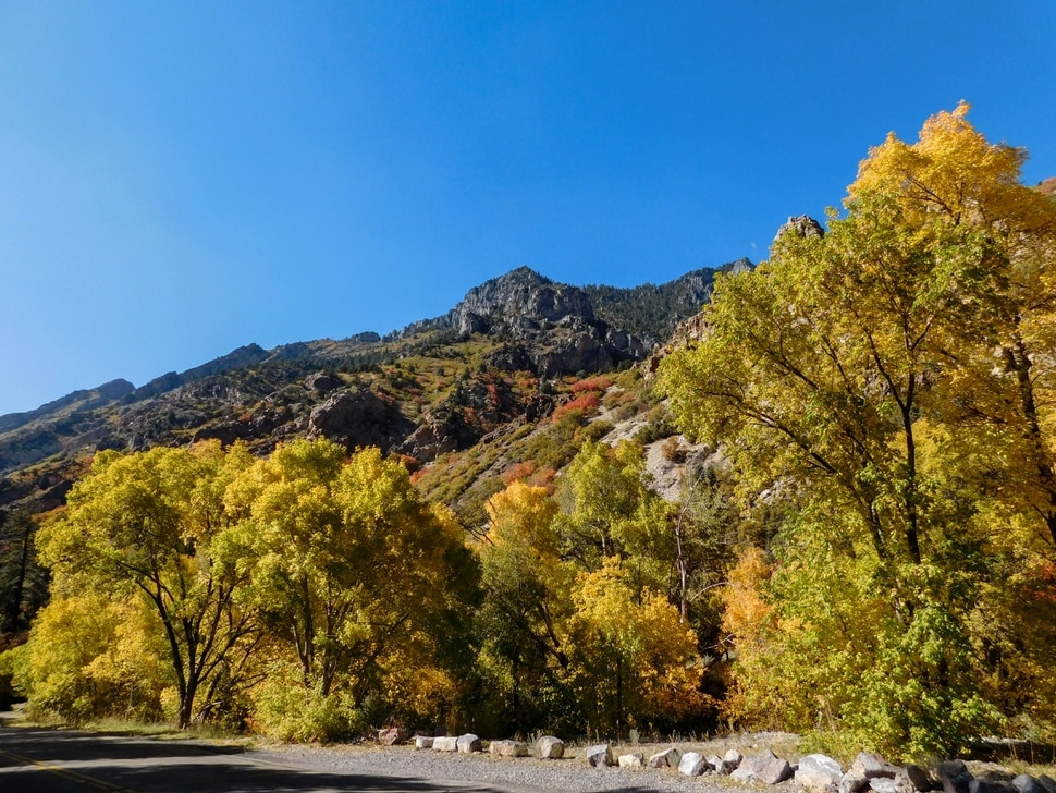 (Erin Alberty|The Salt Lake Tribune) Cottonwood, maple and aspen paint a rainbow of colors on the walls of American Fork Canyon on Oct. 9, 2017 in Utah County.